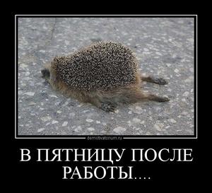 Демотиватор В ПЯТНИЦУ ПОСЛЕ РАБОТЫ....