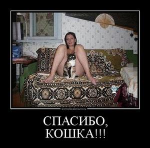 Демотиватор СПАСИБО, КОШКА!!!