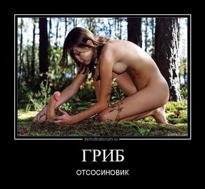 Демотиватор ГРИБ ОТСОСИНОВИК