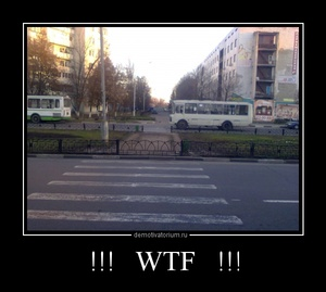 Демотиватор !!!   WTF   !!!
