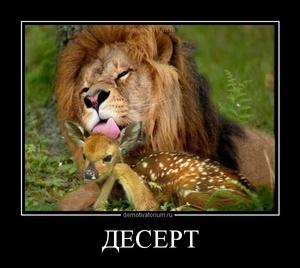 Демотиватор ДЕСЕРТ