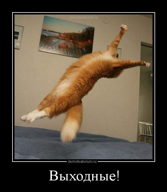 http://demotivatorium.ru/sstorage/3/2012/12/0112120133399011.jpg