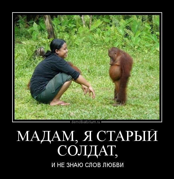 моя а танцую я не очень демотиватор обезьяна темникова последнего уходила