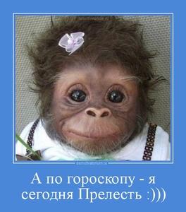 демотиватор А по гороскопу - я сегодня Прелесть :)))  - 2012-12-10