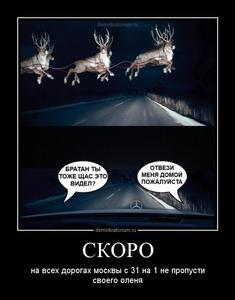 Демотиватор СКОРО на всех дорогах москвы с 31 на 1 не пропусти своего оленя