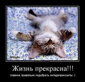 демотиватор Жизнь прекрасна!!! главное правильно подобрать антидеприссанты :)