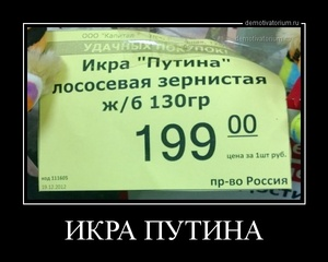 демотиватор ИКРА ПУТИНА  - 2012-12-29
