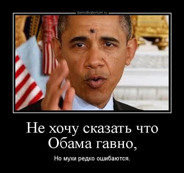 демотиватор Не хочу сказать что Обама гавно, Но мухи редко ошибаются. - 2013-1-28