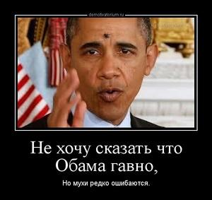 Демотиватор Не хочу сказать что Обама гавно, Но мухи редко ошибаются.
