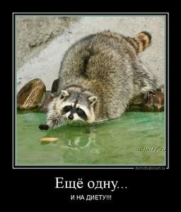 демотиватор Ещё одну... И НА ДИЕТУ!!! - 2013-1-28