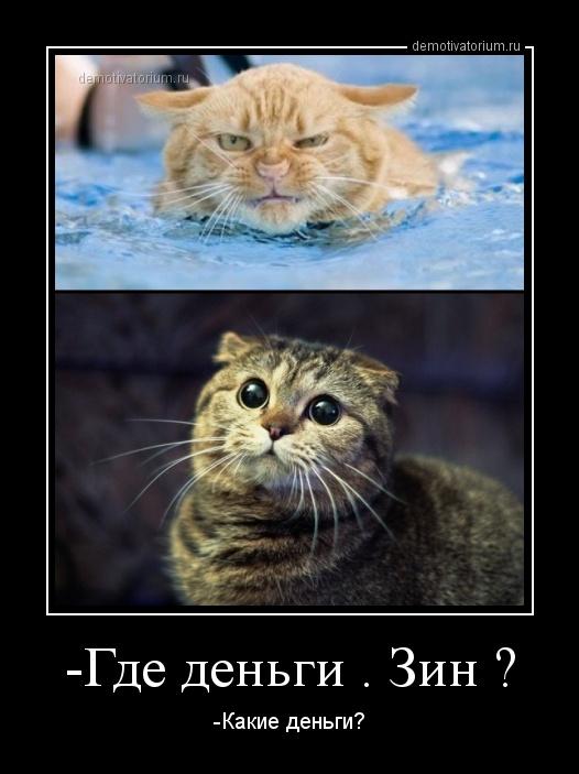 http://demotivatorium.ru/sstorage/3/2013/02/0802131456406263.jpg