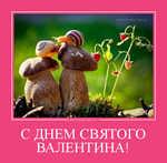 Демотиватор С ДНЕМ СВЯТОГО ВАЛЕНТИНА!  - 2013-2-13