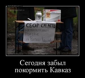демотиватор Сегодня забыл покормить Кавказ  - 2013-2-03