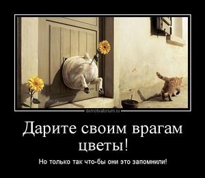 Демотиватор Дарите своим врагам цветы! Но только так что-бы они это запомнили!