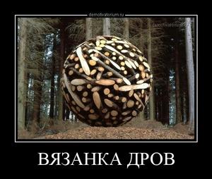 Демотиватор ВЯЗАНКА ДРОВ