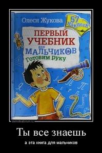 Демотиватор «Ты все знаешь а эта книга для мальчиков»