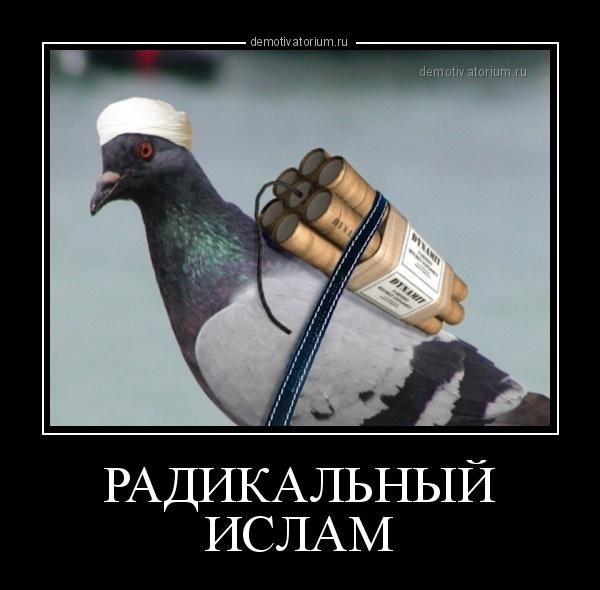 демотиватор РАДИКАЛЬНЫЙ ИСЛАМ  - 2013-5-01
