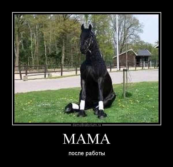демотиватор год лошади нанять