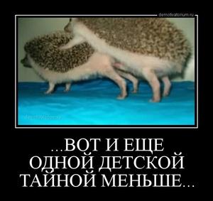 демотиватор ...ВОТ И ЕЩЕ ОДНОЙ ДЕТСКОЙ ТАЙНОЙ МЕНЬШЕ...  - 2013-5-17