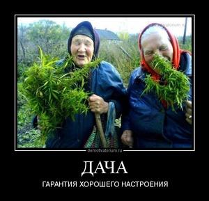 демотиватор ДАЧА ГАРАНТИЯ ХОРОШЕГО НАСТРОЕНИЯ - 2013-5-20