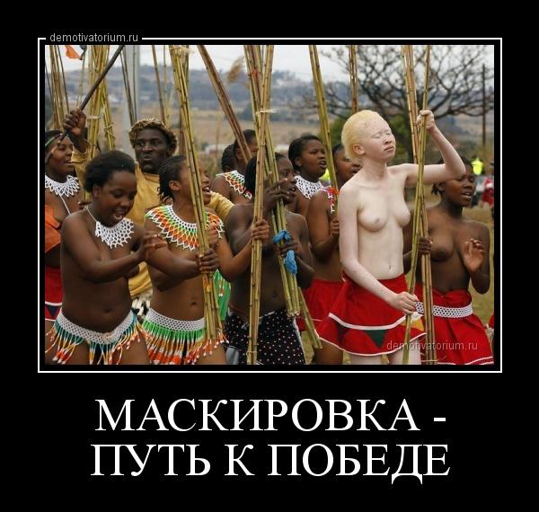 демотиватор МАСКИРОВКА - ПУТЬ К ПОБЕДЕ  - 2013-5-25
