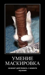 демотиватор УМЕНИЕ МАСКИРОВКА начинает действовать с момента изучения - 2013-5-25