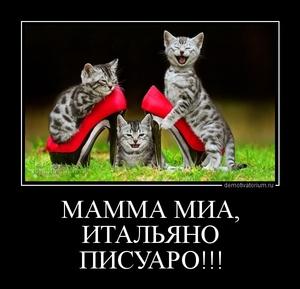демотиватор МАММА МИА, ИТАЛЬЯНО ПИСУАРО!!!  - 2013-5-28