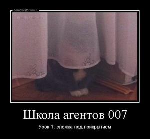демотиватор Школа агентов 007 Урок 1: слежка под прикрытием - 2013-5-29