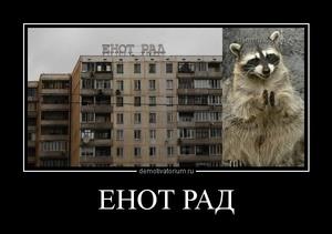 Демотиватор ЕНОТ РАД