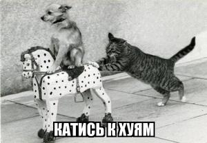 демотиватор  КАТИСЬ К ХУЯМ - 2013-6-03