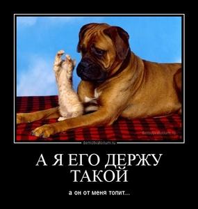 Демотиватор А Я ЕГО ДЕРЖУ ТАКОЙ а он от меня топит...