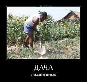 демотиватор ДАЧА отдыхай правильно - 2013-6-18