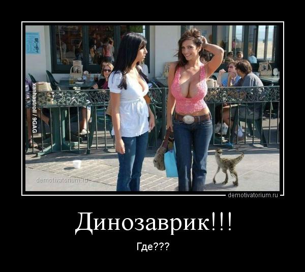 http://demotivatorium.ru/sstorage/3/2013/07/01130051883530/0107131300518977.jpg