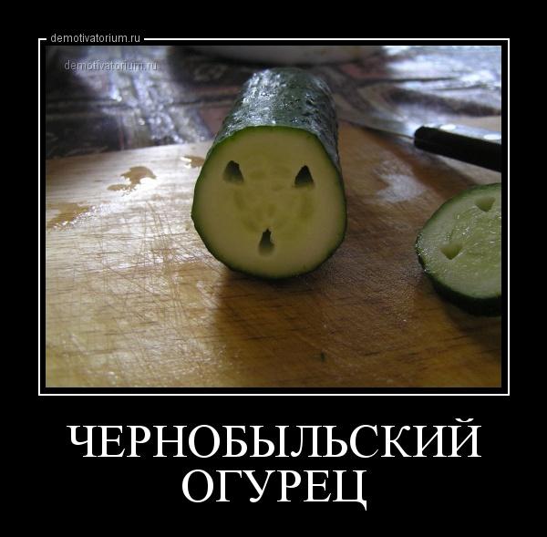 http://demotivatorium.ru/sstorage/3/2013/07/25184302590630/2507131843024769.jpg