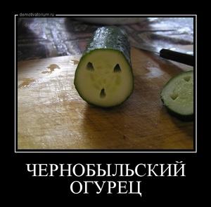 демотиватор ЧЕРНОБЫЛЬСКИЙ ОГУРЕЦ  - 2013-7-25