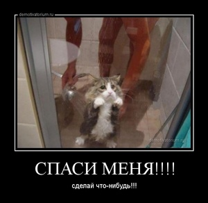 демотиватор СПАСИ МЕНЯ!!!! сделай что-нибудь!!! - 2013-7-27