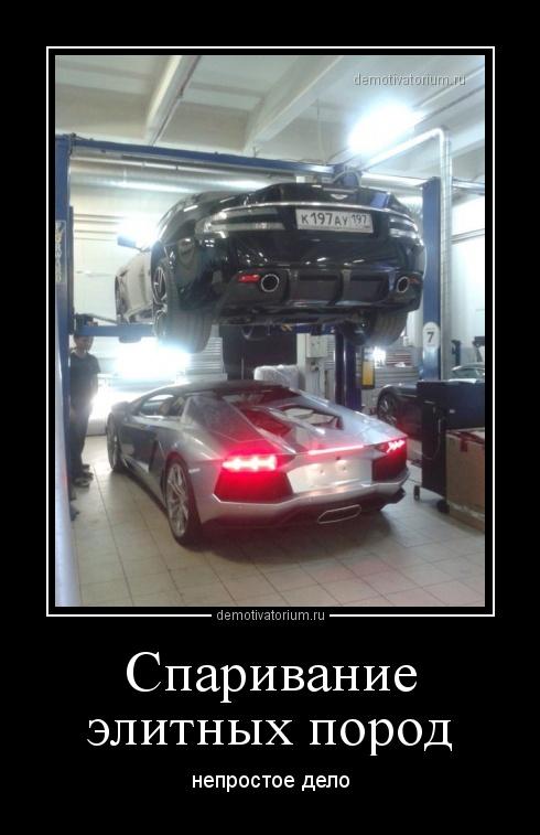 http://demotivatorium.ru/sstorage/3/2013/07/27195736982381/2707131957366189.jpg