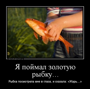 демотиватор Я поймал золотую рыбку… Рыбка посмотрела мне в глаза, и сказала: «Жарь…» - 2013-7-27