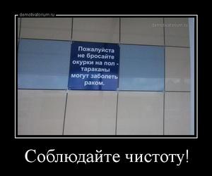демотиватор Соблюдайте чистоту!   - 2013-7-30