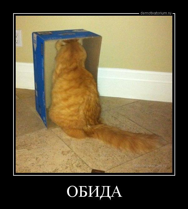 http://demotivatorium.ru/sstorage/3/2013/08/05135319137305/0508131353193731.jpg