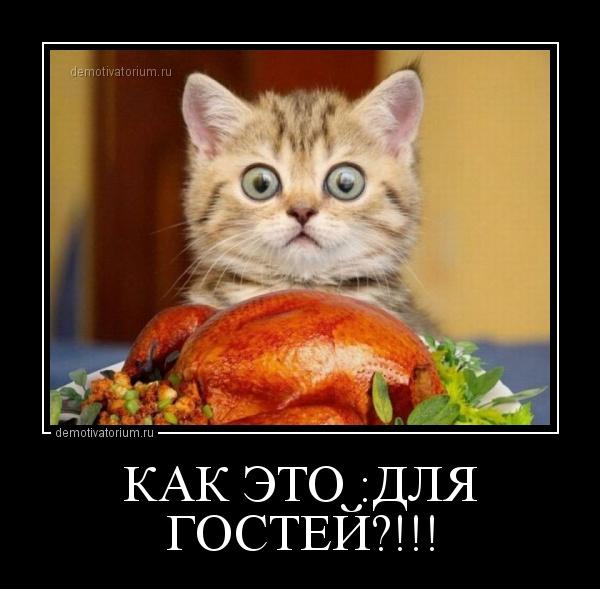 http://demotivatorium.ru/sstorage/3/2013/08/05142151416873/0508131421517689.jpg