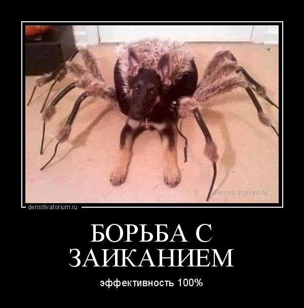 демотиватор БОРЬБА С ЗАИКАНИЕМ эффективность 100% - 2013-8-24