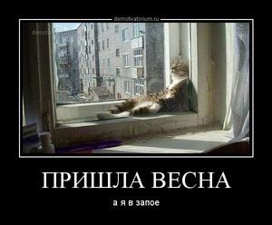 Демотиватор ПРИШЛА ВЕСНА а я в запое