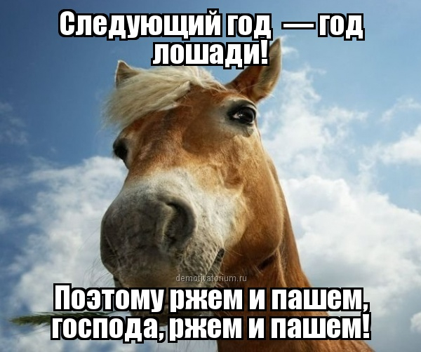 таковым демотиватор год лошади цвет, убираю