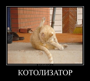 демотиватор КОТОЛИЗАТОР