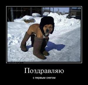 Демотиватор Поздравляю с первым снегом