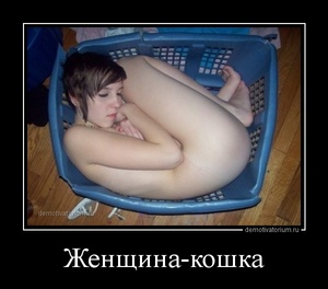 Демотиватор Женщина-кошка