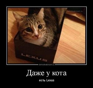 демотиватор Даже у кота есть Lexus