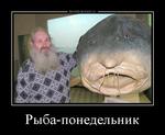 Демотиватор Рыба-понедельник
