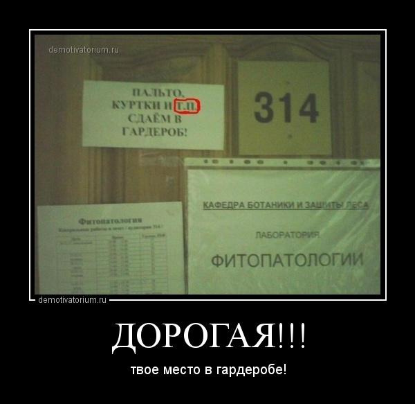 демотиватор ДОРОГАЯ!!! твое место в гардеробе! - 2014-2-24